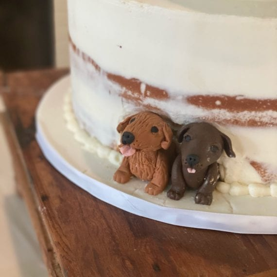 Peeping Dogs in Wedding Cake
