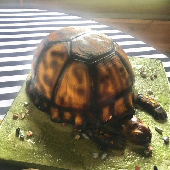 3D Turtle Groom's Cake