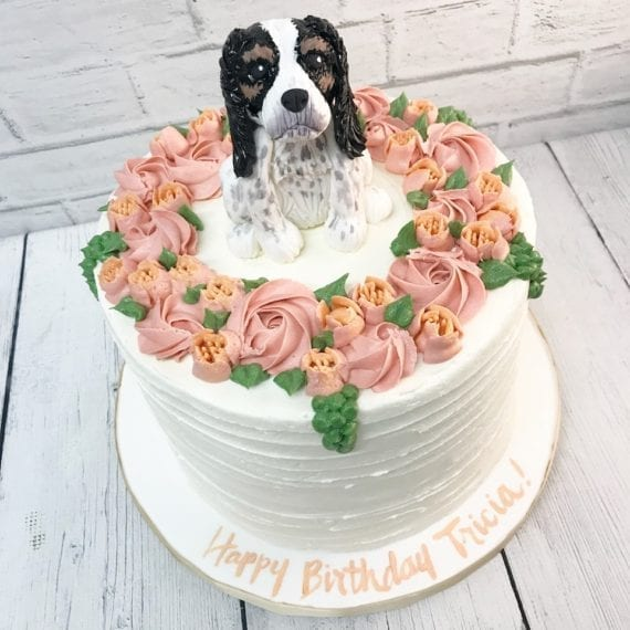 Cocker Spaniel Dog & Pink Rosettes