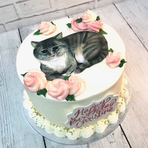 Painted Cat Birthday Cake